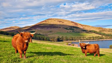 Best Things to Do in the North-East of Scotland