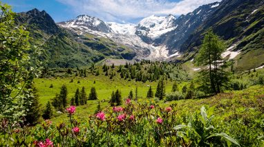 What to Do in the Grand Est Region of France