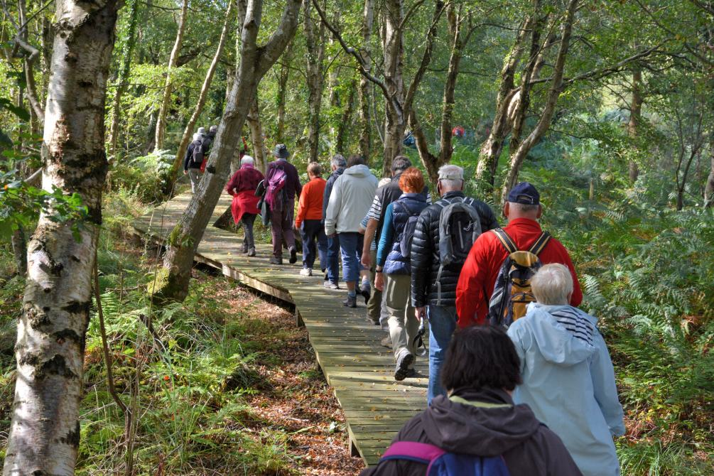 Group of senior hikers on a hiking trail in Brittany